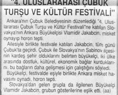 BASINDA TURŞU VE KÜLTÜR FESTİVALİ