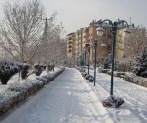 Parklar Kış Manzaraları