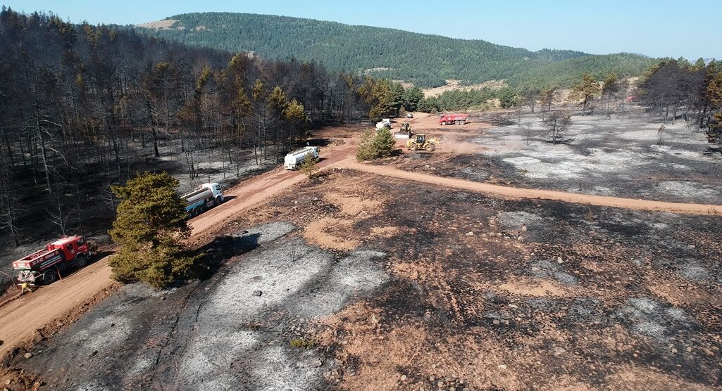 Çubuk'ta orman yangını söndürüldü