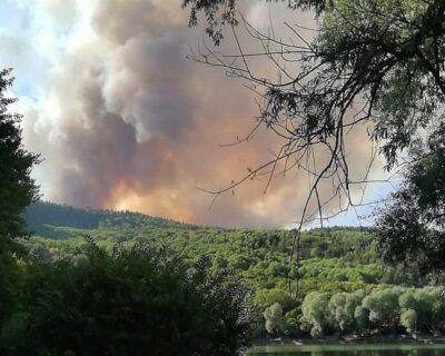 Çubuk 'ta orman yangını