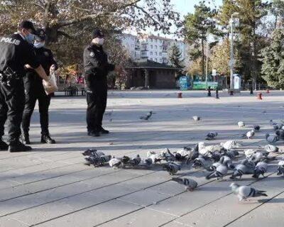 Polis Ekipleri Sokak Hayvanlarını Unutmadı