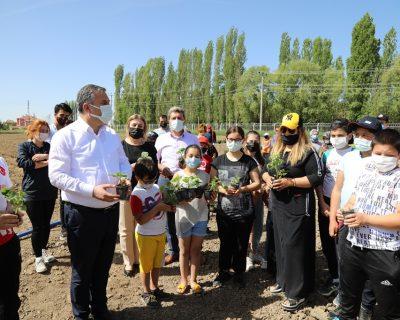Çubuk'ta genç sporcular ihtiyaç sahipleri için sebze yetiştiriyor